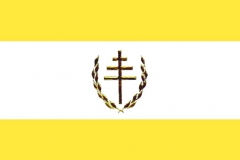 CCMS flag.